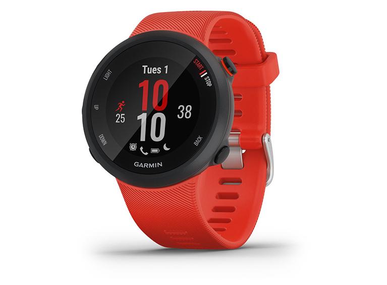 Smartwatch Forerunner 45