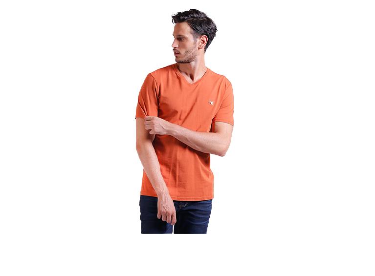 Camiseta C/V Basic