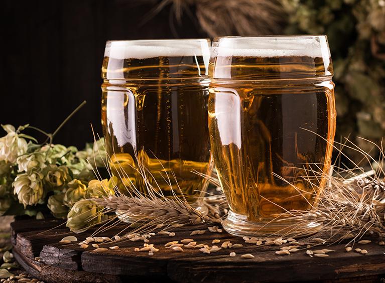 Tour & tasting - fábrica de cerveza