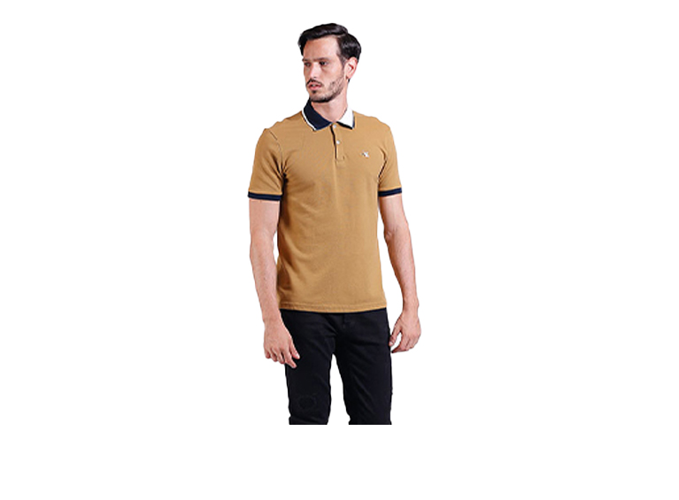 Camiseta Polo Blocks
