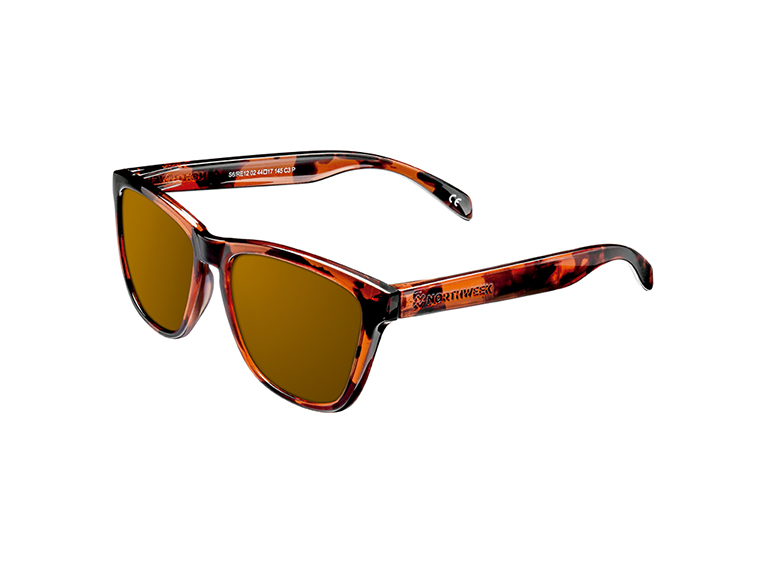 Gafas Regular