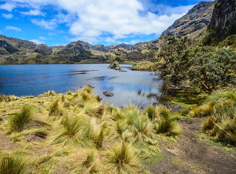 Excursión al Parque Nacional del Cajas