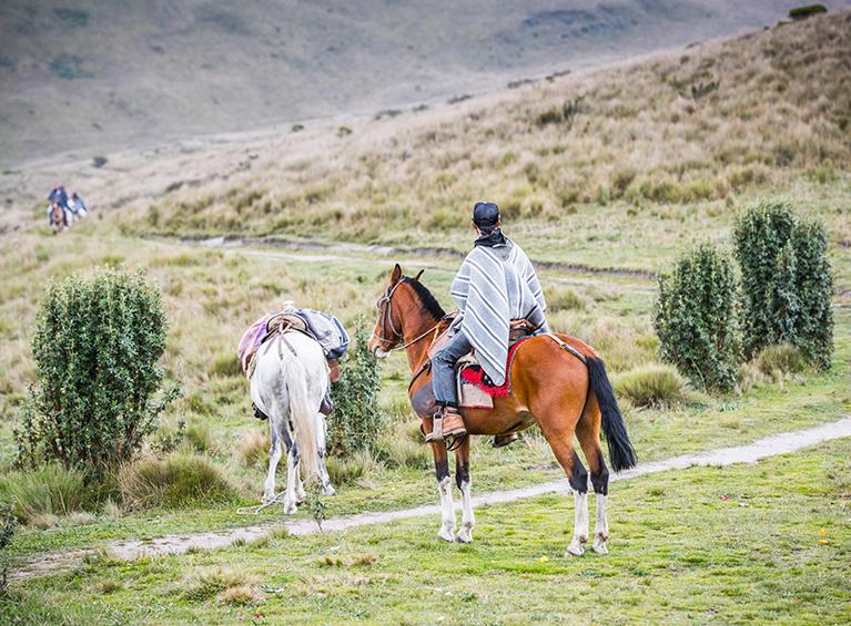 Cabalgatas en el Pasochoa (sin transporte)