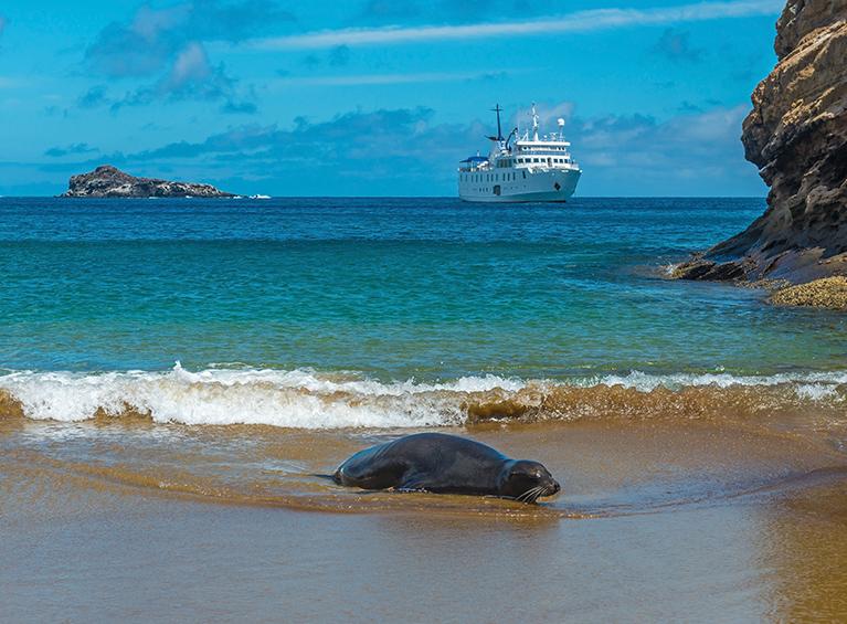 Viaje en Crucero por las Islas Galápagos