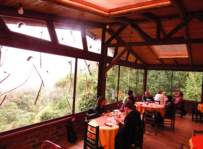Hotel Bellavista Cloud Forest Pareja