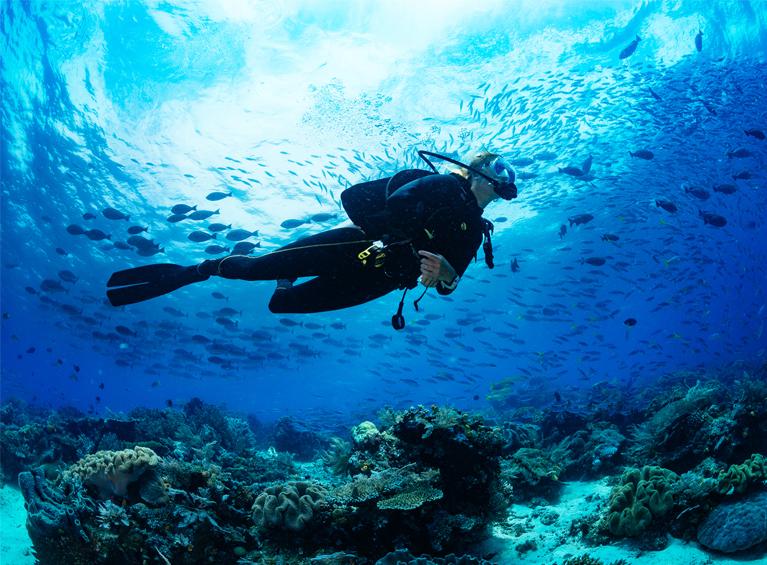 Certificación Scuba Diver