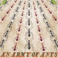MinaLima - An Army of Ants Print