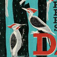 MinaLima - A Descent of Woodpeckers Print