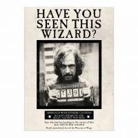 MinaLima - Have You Seen This Wizard Poster
