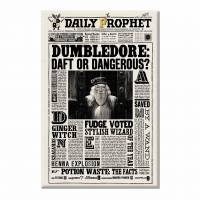 MinaLima - The Daily Prophet Magnet Set