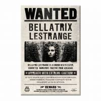 MinaLima - Ministry of Magic Wanted Posters Magnet Set