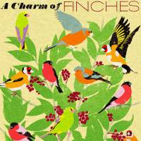 MinaLima - A Charm of Finches<br>グリーティングカード