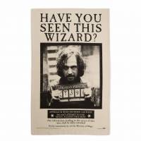 MinaLima - Have You Seen This Wizard? Tea Towel