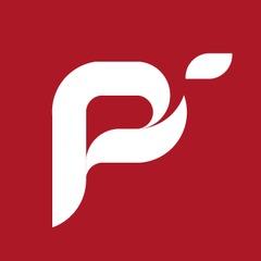 Logo pi facebook 04