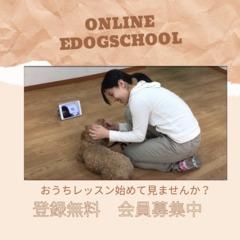 Online edogschool