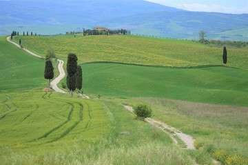 Orcia 6
