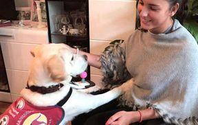 """<p>Als Ena-Sara Ramusovich über ihr erstes Treffen mit Labrador Neo spricht, leuchten ihre Augen. Er ging ganz offen auf sie zu: """"Er kuschelte sich an mich und leckte sogar meinen Rollstuhl, was der größte Beweis für die Liebe ist, die wir gesucht und gefunden haben.""""</p><p><br></p><p>Eine 21-jährige Frankfurterin, die von Geburt an Politikwissenschaft an der Goethe-Universität studiert, litt am ganzen Körper an Lähmungen. """"Ich habe dreifache Haut mit Frühgeburt, anschließendem schwerem Sauerstoffmangel und der daraus resultierenden Gehirnblutung und leide an spastischer Tetraparese"""", sagt sie.</p><p><br></p><p><strong>Junge Frankfurterin braucht Blindenhund: """"Perfekte Hilfe""""</strong></p><p><br></p><p>Hier taucht der 21 Monate alte Labrador Neo auf - eine Person mit Behinderungen, die fast eineinhalb Jahre beim deutschen Verein Rehahunde in Rostock studiert hat, um Menschen wie Ena-Sara Ramusovich zu helfen. Wenn eine junge Frau über ihn spricht, fängt sie an zu schwärmen.</p><p><br></p><p>Auf Bestellung konnte er Türen öffnen, Gegenstände mitbringen, Wäsche aus der Waschmaschine nehmen, Schuhe und Socken ausziehen und den Rollstuhl sogar rechtwinklig zum Bett stellen, damit er manövrieren konnte.</p><p><br></p><p><strong>Ein Diensthund für eine Frau aus Frankfurt ist zu teuer? 15.000 Euro gingen verloren</strong></p><p><br></p><p>Problem: Neo ist noch in Rostock. Aufgrund der Langzeittraining kostet der Helferhund 28.000 Euro, die Ena-Sara Ramusovich auf Kosten von Spenden und Geldern Dritter sammeln muss. Der Verein habe dies angepasst, um eine Überschuldung der Opfer für das Tier zu verhindern, erklärt sie.</p><p><br></p><p><strong>Frankfurt: Ena-Sara Ramusovich - """"Zusammen""""</strong></p><p><br></p><p>Für Ena-Sarah Ramusovich wäre dies eine Katastrophe: """"Es würde mir das Herz brechen, es wäre so ein Misserfolg, ich weiß nicht, wie ich damit umgehen soll"""", sagt sie leise. """"Neo ist für mich viel mehr als ein Assistent, für mich ist er ein Engel auf vier Beinen, wir """