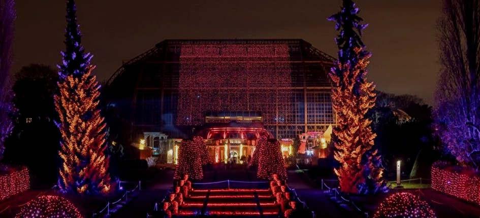 """<p>Im """"Weihnachtsgarten"""" verwandelt sich der Botanische Garten in Berlin in eine leuchtende Märchenlandschaft mit Lichtspielen aller Art, Märchenwäldern und dreidimensionalen Lichtfiguren.</p><p><br></p><p>Der Botanische Garten Dahlem öffnet jeden Abend Mitte November 2019 seine Pforten und lädt zu einem besonderen Spaziergang durch den in England bereits sehr beliebten Berliner Weihnachtsgarten unter dem Namen Christmas at Kew ein.</p><p><br></p><p><strong>Weihnachtslichter leuchten im Botanischen Garten</strong></p><p><br></p><p>Auf einem etwa eineinhalb Kilometer langen Spaziergang können die Besucher einen beschaulichen Abend in einer fabelhaften Umgebung verbringen. Mehr als 1 Million Lichtpunkte, 3000 magische Lichter und viele bunte Lichter tauchen den Botanischen Garten in das Lichtermeer des neuen Jahres ein. Neu ab 2019: Toningenieur Burkhard Finke arrangiert die Hintergrundmusik zahlreicher Leuchten im Garten, um Licht und Hörgefühl in Einklang zu bringen.</p><p><br></p><p><strong>Eisbahn, Glühwürmchengarten und Kochkunst</strong></p><p><br></p><p>Jüngere und ältere Gäste können im Hüttenrestaurant regionale Spezialitäten genießen oder auf einer 300 m² großen Eisbahn Schlittschuh laufen. Weitere Highlights sind ein Sternenwald, ein Garten mit Glühwürmchen, Rudolph und seinen Freunden, ein Zauberwald und ein Soundspiel.</p><p><br></p><p><strong>Zwei Berliner Originale: Berlin Schnauz Tour und Weihnachtsgarten</strong></p><p><br></p><p>Besuchen Sie nach zwei Stunden Lachen und Überraschen die schönsten Sehenswürdigkeiten der Stadt und schlendern Sie anschließend durch den romantisch beleuchteten Botanischen Garten. Während der Berliner Schnauze Lights Tour erwartet Sie ein umfangreicher Unterhaltungsabend.</p>"""