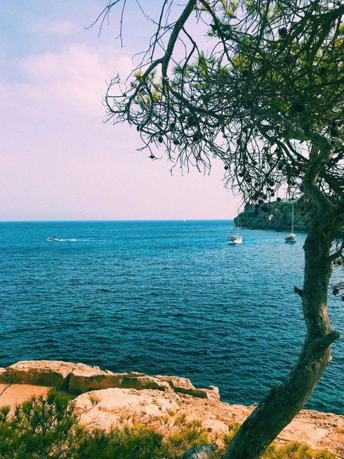 """1. Baña 20 países y 3 continentes El mar mediterráneo está rodeado por veinte países que pertenecen a los continentes de Europa, África y Asia. Algunos de ellos son Italia, España, Francia, Grecia, Turquía, Líbano, Egipto, Libia, Túnez, Argelia o Marruecos. Unos 100 millones de visitantes hacen de las costas mediterráneas uno de los principales focos turísticos mundiales.  2. Representa un 1% de la superficie de los océanos El mar Mediterráneo tiene una superficie de 2,51 millones de kilómetros cuadrados. Aún así, representa un insignificante 1 % de la superficie total de los océanos. Cuenta con 46.000 kilómetros de litoral.  3. Su profundidad máxima supera los 5.000 metros La profundidad media del mediterráneo es de 1.430 metros, sin embargo, en la fosa de Matapán, cerca de Grecia, la cota más profunda del mar alcanza más de 5.000 metros, en concreto 5.267. Muy lejos en cualquier caso de la mayor profundidad del océano documentada, cerca de la isla de Guam, al norte de las Islas Filipinas, en la famosa fosa de las Marianas, con una profundidad de 11.033 metros.   4. En la Roma Antigua era llamado Mare Nostrum Mare Nostrum fue el nombre dado al mar Mediterráneo por los romanos en su época imperial, que significaba """"mar nuestro"""" en latín. La etimología que ha trascendido a nuestros días proviene también del latín """"Mar Medi Terraneum"""", cuyo significado es """"mar en el medio de las tierras"""".  5. El estrecho de Gibraltar: única fuente de renovación El Mediterráneo se conecta con el océano Atlántico, que es su única fuente de renovación y reposición de agua. Lo hace únicamente por el estrecho de Gibraltar, que separa Europa y África y que en su punto más estrecho es de 14,4 kilómetros. Por ello, se podría decir que la cuenca del Mediterráneo es """"casi"""" cerrada.  6. Gran diversidad marina El Mediterráneo es uno de los mares con más diversidad marina del planeta. Así lo determina un trabajo coordinado por el CSIC (Consejo Superior de Investigaciones Científicas) que lo sitúa """