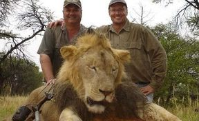 <p>There have been accusing on a local Liverpool council that they pressurized Crufts to cancel a shooting show by confusing the authorities between a Lion Hunting and Pheasant shooting.</p><p>Famous Around the World 'The Great British Shooting show' was scheduled to be organized in Liverpool in 2020.&nbsp;</p><p>However, the event got cancelled after the intervention from the local council. The council is accused of creating a widespread campaign against the show and getting a petition signed against the appearance with more than 110,000 signatures.&nbsp;</p><p>Eduardo Goncalves, the head of the campaign against the hunting and known as ban trophy hunting, contacted the MP's and the mayor of the city along with the city's councillors. The visit made the authorities releasing a statement against hunting and condemning the activity.&nbsp;</p><p>Council declared complete opposition to the hunting event around the globe which forced the organizers to cancel the event.</p>
