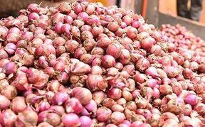 <p>Onion of Nashik-Alwar-Gujarat was less, now bought from Afghan, still 70 to 90 rupees. Kg</p>