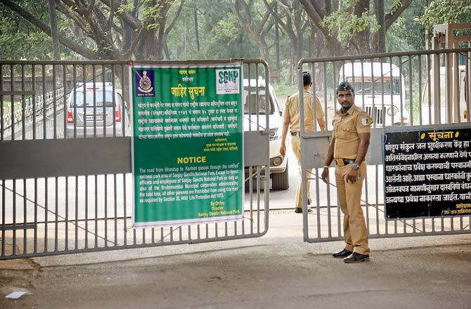 """<p class=""""ql-align-justify""""><span style=""""background-color: transparent; color: rgb(0, 0, 0);"""">Two weeks after the deer was crushed by the car of a Shiv Sena MP in the tourism area of Sanjay Gandhi National Park, the Forest Department has issued new instructions for motorists of private vehicles. Notices have placed on the gates leading to the internal roads. Notices have been placed at Bhandup and Kanheri gates, stating that only the Forest Department officer and BMC on duty are allowed to enter the internal roads. Some politicians still use the road to avoid traffic. The vehicular activity disturbs wildlife movement in the main area. A notice has also been placed at the Khindipada Gate. On 27 November, the Forest Department imposed strict rules after the murder of MP Rajendra Gavit, a spotted deer crossing the road adjacent to Trimurti station inside SGNP. The car is said to have entered the Khandipada-Bhandup gate, killing the deer. SGNP-Borvli a few hundred meters ahead of the main gate. Let us tell you that a spotted deer was killed by Shiv Sena MP Rajendra Gavit's SUV in Mumbai's Sanjay Gandhi National Park. The incident occurred on Thursday evening, while National Park officials revealed it on Monday. In this case, the National Park officials seized the MP's car, while the driver has been released after depositing cash bonds after arresting him. An ACF rank officer is investigating whether the accident happened due to negligence or the driver deliberately carried out the incident. Explain that the maximum driving limit in this park is limited to 20 kilometers per hour.</span></p>"""