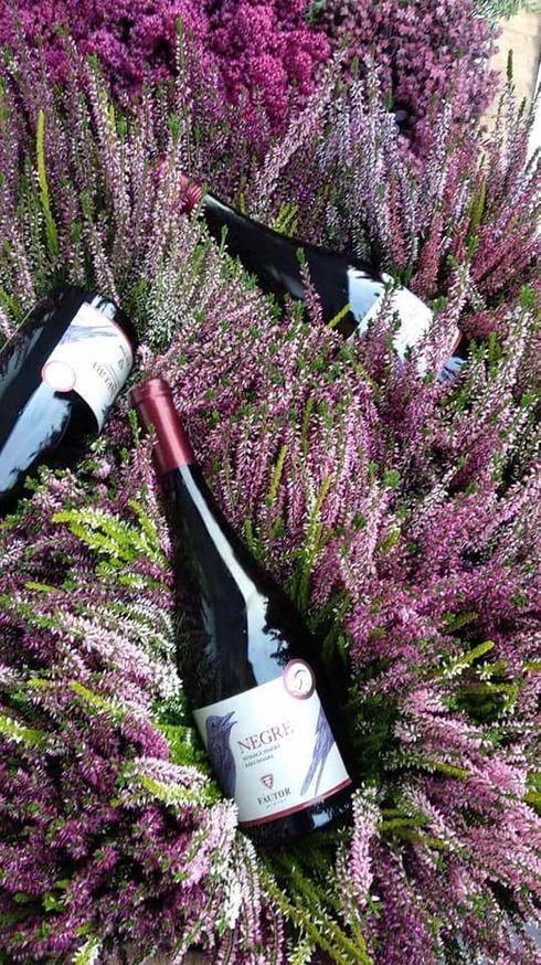 """<p><span style=""""color: rgb(28, 30, 33);"""">Cea mai interesantă și colorată sărbătoare națională este Ziua Vinului, anul acesta are loc în perioada 5-6 octombrie. Sărbătoarea în sine este o paradă de vinificați cu compoziții muzicale și coregrafice. 68 de producători locali își vor prezenta vinurile și produsele noi în timpul vacanței. Vinurile sunt oferite în combinație cu preparate naționale moldovenești. Zeci de mii de turiști vizitează Moldova în aceste zile.</span></p>"""