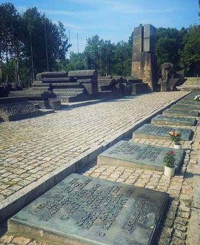 """<h1><span style=""""color: rgb(0, 71, 178);"""">Pomnik jest zainstalowany na końcu torów, wzdłuż których więźniowie zostali doprowadzeni do Birkenau. Ta kolej jest kosztownie zablokowana, a tym samym symbolizuje setki tysięcy przerwanych tutaj żyć. Przed pomnikiem znajdują się 23 tablice z napisami w różnych językach, stosownie do liczby narodowości osób torturowanych w obozie.</span></h1>"""