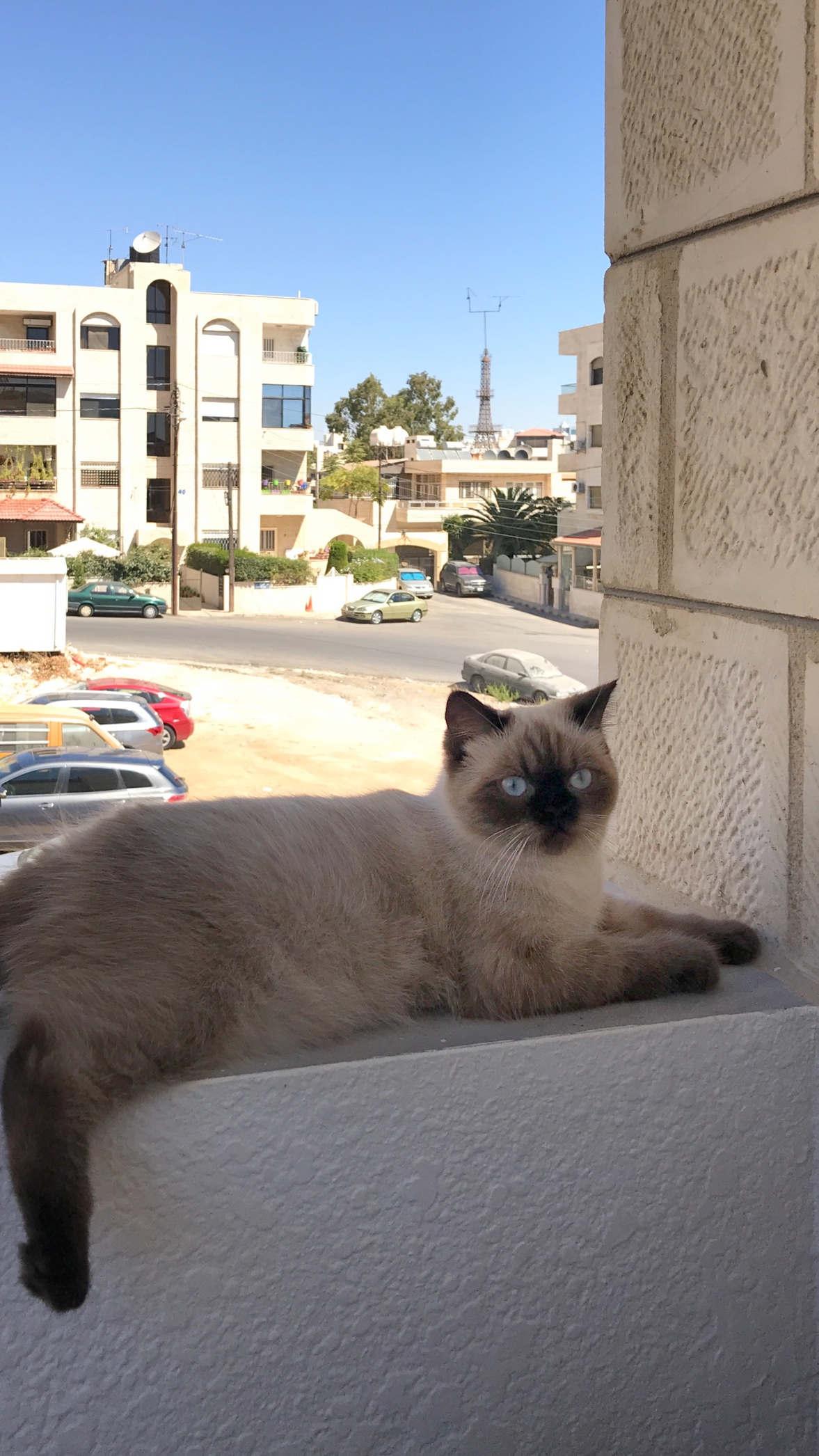 warsaw_travel_jordan_nowe_miejsca_3632_02_10_2019