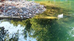 <p>Несмотря на удаленность от асфальтированной дороги вдоль реки Мзымты и дальнейшее передвижение пешком значительного расстояния, озерно Кардывач заслуживает внимания не менее других распространенных экскурсионных туров по всему Краснодарскому краю. Туристы бывают здесь значительно реже, чем на других ближайших озерах. Но живописность и целостность диких красот удивляет. Озеро считается самым глубоким на Западном Кавказе. Имеется множество оборудованных туристических зон. Несмотря на труднопроходимые места, стоит посетить это озеро и полюбоваться ее красотами.</p>