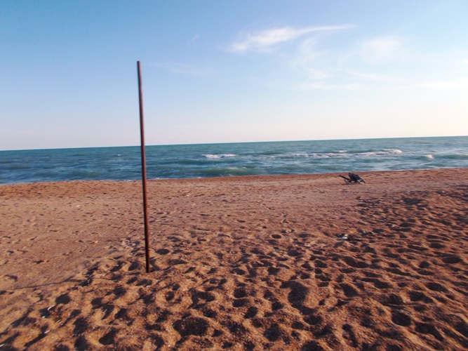 """<p><span style=""""color: rgb(34, 34, 34);"""">Курорт ст. Благовещенская находится между двух лиманов Черного и Азовского морей. Это одно из немногих мест, где песчаный пляж создан природой. Удобное расположение полуострова позволяет туристам, если на одной половине шторм, перейти на другую половину, где тишина и благодать. Совсем недалеко располагается страусиная ферма, где содержать множество видов животных. Для детей очень интересное местечко, в котором можно полюбоваться животными и сотворить своими руками глиняную посуду или скульптуру. Соседями страусов можно назвать лошадей, осликов, кур и множество других животных. Благовещенская - настоящий рай для туристов.</span></p>"""