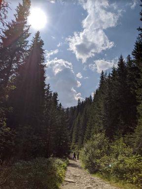 <p>Гора Говерла - це найвища гора та найвища точка на території всієї України. Говерла розташована на межі Закарпатської та Івано-Франківської обл . Висота гори складає 2061 м над рівнем моря. Ще в 1880 році тут був відкритий перший маршрут для туристів зі сходженням на вершину гори.</p>