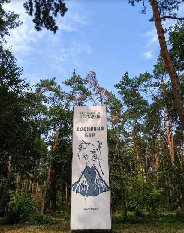 <p>в «Сосновому бору» відкривається дивовижний вид на Дніпро і Черкаську дамбу. Тому обов'язково загляньте і в цей куточок парку - фото на тлі синього неба, зелених схилів і блакитної води точно сподобається вам) Тому обов`язково візьміть з собою фотоаппарат або телефон)</p>
