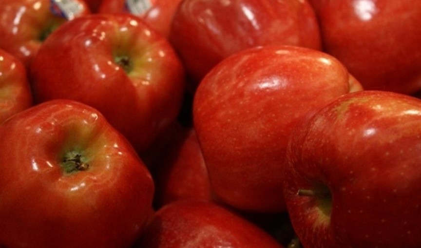 <p>The apple crop of Washington has created records this year. The yield of this year is one of the largest in the state's history. The harvest is estimated to be about 138.2 million boxes of 40 pounds by the Washington State tree fruit association. The Yakima Herald-Republic has reported that the yield of this year is much larger than last year's. Last year's crop was 116.7 million boxes.&nbsp;</p><p>The figure this year is almost 22 million boxes higher than the harvest of last year. However, this year's harvest narrowly missed the numbers of 2014. 2014 holds the record for the highest yield with 141.8 million 40 pound boxes.&nbsp;Association has reported that the harvest is almost complete throughout the state. The number of 138.2 million boxes consists only of those apples which will be sold fresh. The apples that will be sent to a processor for conversion are not included in the number.</p><p><br></p>