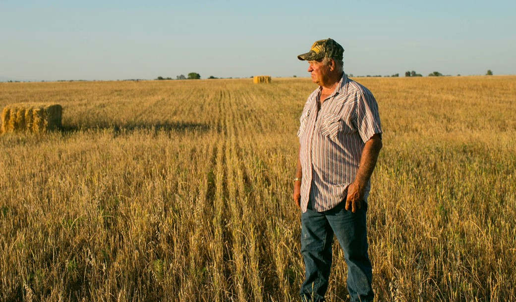 "<p>Jack LaPant was in shock when he came to know that he could be violating the Clean Water Act for farming his land. The federal law includes an explicit exemption for ""normal"" farming activities. However, the Army Corps of Engineers filed a case against him in 2016 for plowing he did in 2011. In March 2012, he sold that property, which is located in Tehama County 4 miles south of the city of Red Bluff. Before beginning plowing, he consulted government officials who never suggested that he should meet the Army Corps of Engineers. When he talked to officials and asked them if it is okay to use the land to grow wheat, they cleared it. However, no one tells the farmers that one has to check with the Army Corps of Engineers before using their land for farming. Department of Agriculture has no idea about it though both departments belong to the same government. Tony Francois, who is a lawyer with Pacific Legal Foundation, said that though it is mentioned in the Clean Water Act that standard farming practices are exempted, Army Corp has imposed many hurdles of their own.</p><p><br></p><p><br></p>"