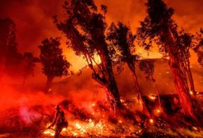<p>California's fire season is increasing its pace when it should slow down for the third season in a row. The wind storms and several fires made the state very dry and vulnerable to fire till the winter showers reduce the dryness of the country.&nbsp;</p><p>A season ago, various forecasters expected that California might not see a fire season this year as there were showers in the northern part of the state, and snowfall was witnessed on the slopes of Lassen National Park. Most of the state enjoyed cold winterish weather. However, soon, the pleasant weather passed, and October dry windstorms replaced the weather. It resulted in severe fire, and this fire season could last till November or even December if the winter showers don't start soon to shift the dry winds.&nbsp;</p><p>&nbsp;</p>