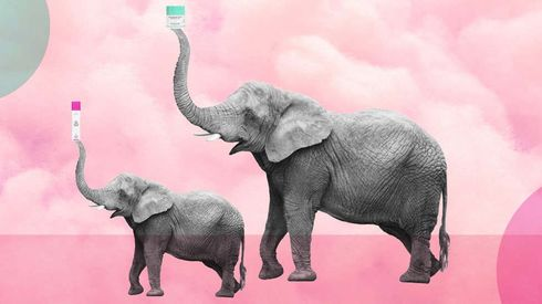 """<p>Drunk Elephant, the beauty company based in the Bayou City of Houston got sold to the Japan-based beauty company Shiseido. The Japanese company announced the deal which is worth a whopping $845 million. Drunk Elephant, which was founded seven years ago in Houston, specializes in the eco-friendly and clean product. The company was hugely popular in beauty stores with Sephora providing it one of the biggest markets.&nbsp;</p><p>Influenster, one of the leading review platforms of products announced Drunk Elephant a winner of its 2019 """"Reviewers Choice Award: Best In Beauty"""". The brand also won awards in 'Best Indie face oil' and 'Best Indie Eye Cream' award in September on the same platform. Tiffany Masterson in June had hinted about a potential sale of the company in June. However, she also had told that the company would only be sold to someone who shared the same values.</p><p>&nbsp;</p><p>&nbsp;</p><p>&nbsp;</p>"""