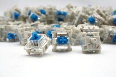 Gateron Blue Switch - Plate Mount - (10 pcs)