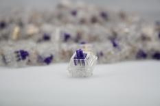 Zeal Purple Switch 67g