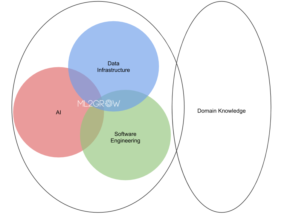 ML2Grow domain expertise: data infrastructures + AI/ML + software engineering, enriched with your domain knowledge