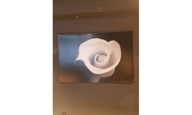 Beyaz Çiçek tablo