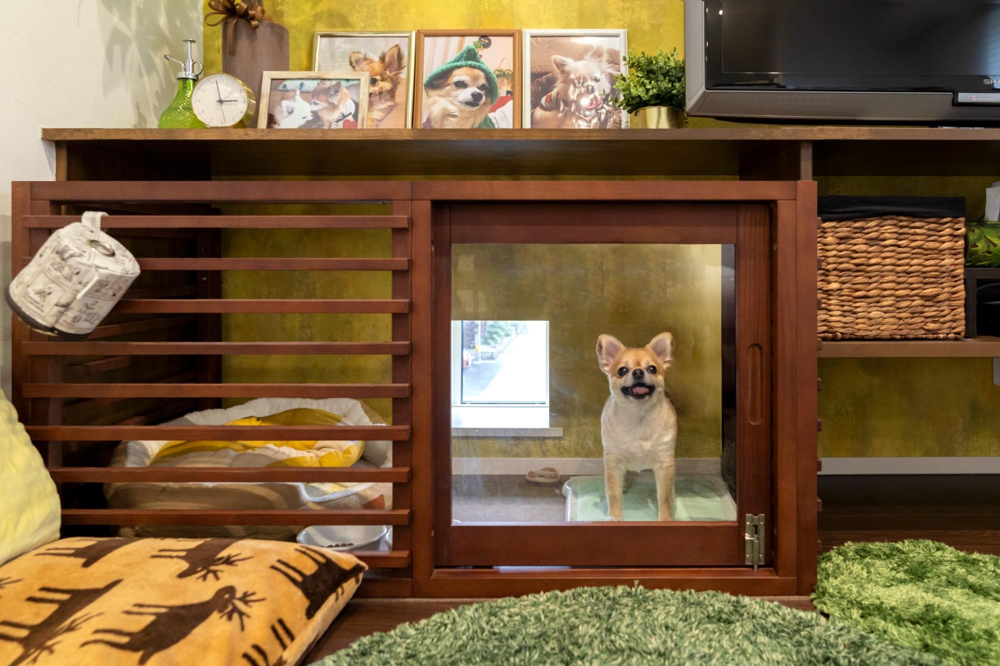 新潟材協 クオリティハウス「趣味と暮らし、愛犬との時間を大切にするリノベーションの家」の実例写真