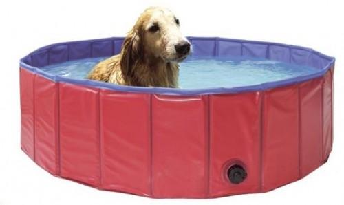 Bazény pre psov