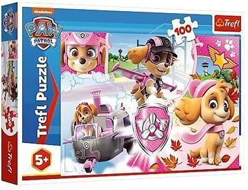 Puzzle Tlapková patrola Skye v akci