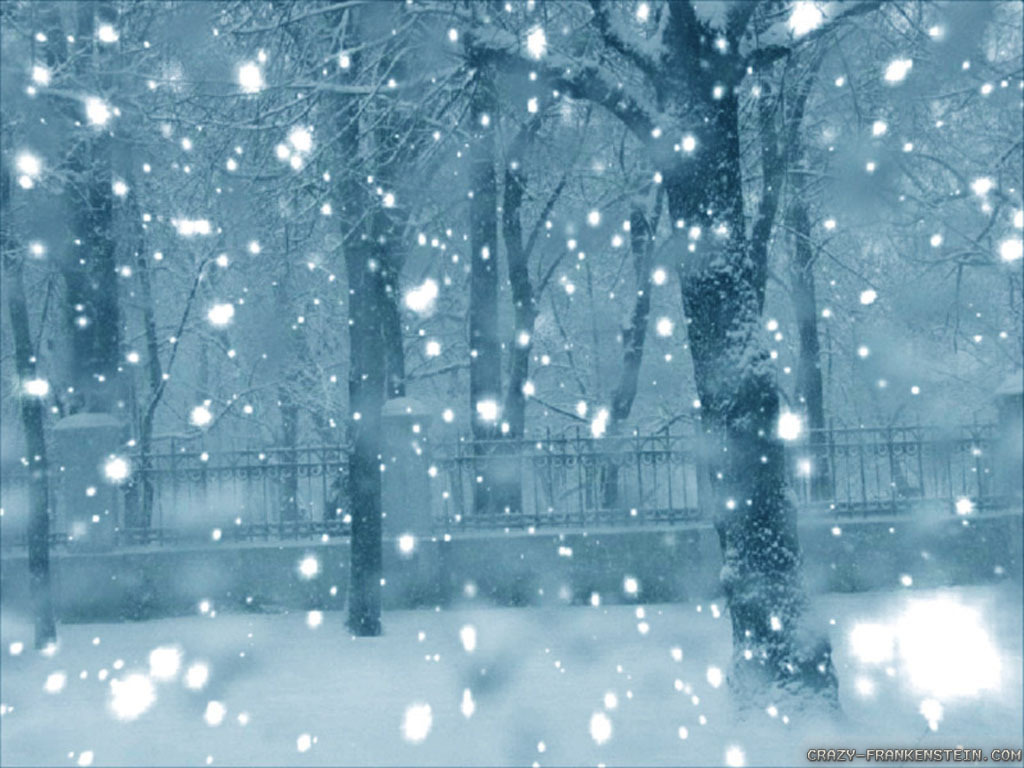 A picture of a street covered in heavy snow. The trees and gates are covered in a layer of snow. Snow is still falling and covers part of the image in white spots.