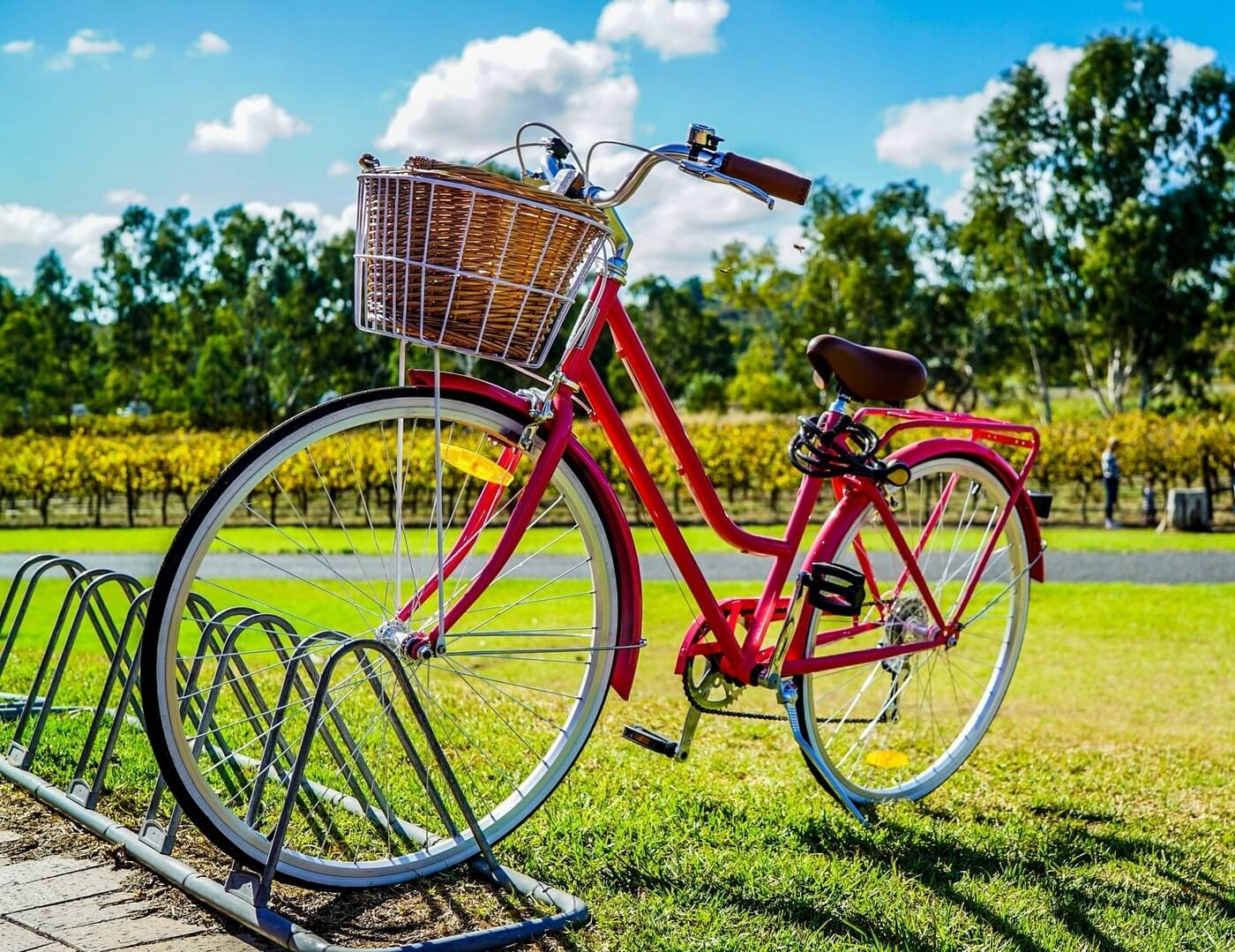 A picture of a red bike parked in a bike stand. Behind it is a green park with yellow flowers and tall green trees.