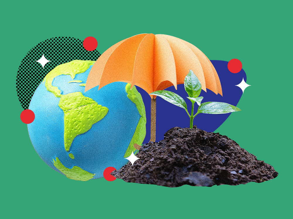 Top 2021 ESG Investing Trends: Greener Pastures Lie Ahead