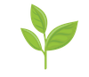 196-1966363_growing-plants-animation-png-removebg-preview.png