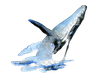 sperm-whale-watercolor-painting-beluga-whale-drawing-whale-removebg-preview.png