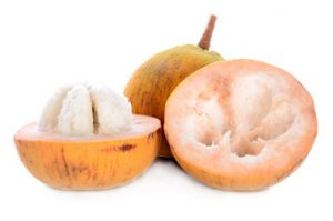 santol fruit